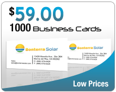 $59 1000 business cards